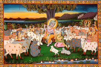 Krishna the Supreme Cowherd