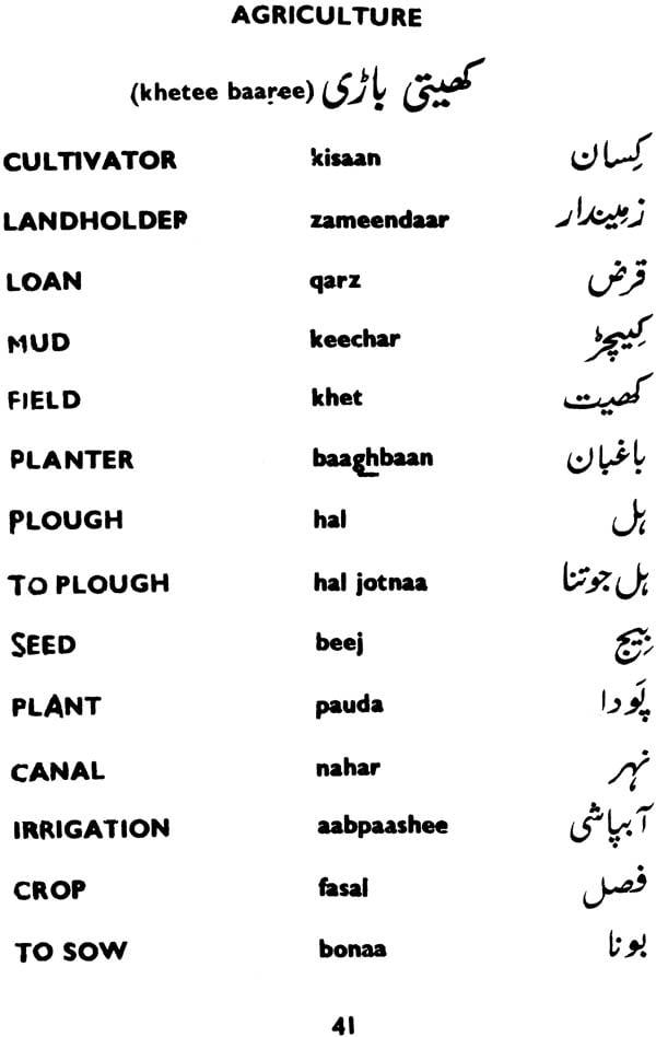 Speak hindi in 30 days pdf