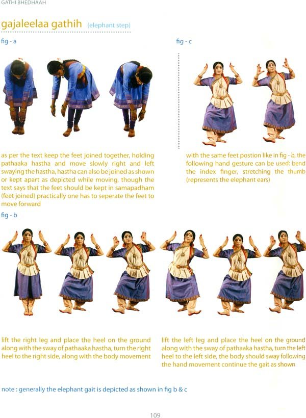 Paadha Bhedhah Vocabulary Of Feet Movements In Bharatanatyam