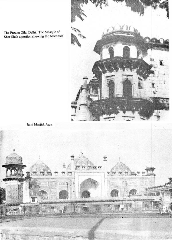 indo islamic architecture an old and rare book