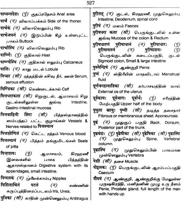 Tamil Lexicon Pdf