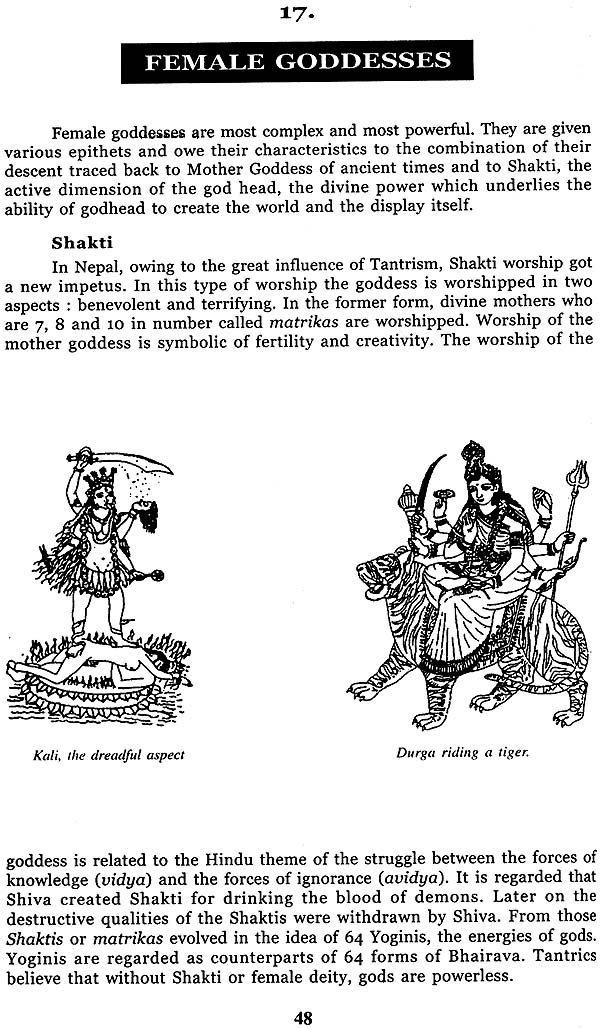 Hindu Buddhist And Tantric Gods And Goddesses Ritual Objects And