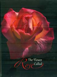 Rose The Flower Called