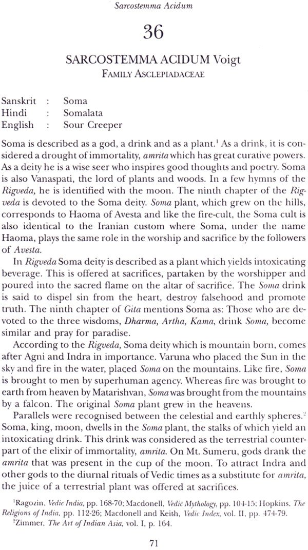 plant myths and traditions in sample pages