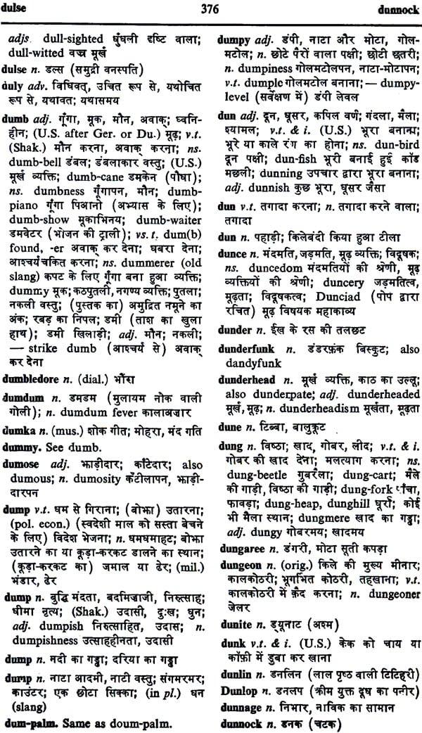 Chambers English Hindi Dictionary (Nineteenth Edition)