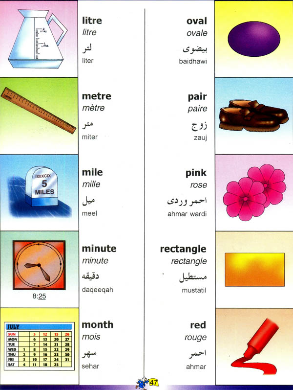 picture dictionary english french and arabic
