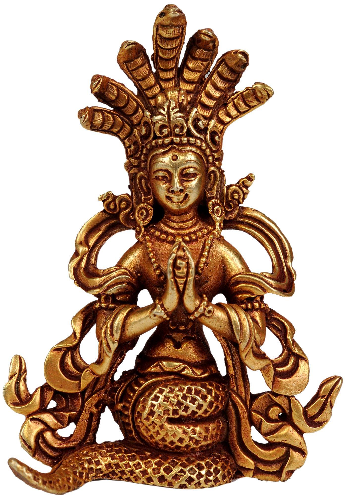 naga hindu ile ilgili görsel sonucu