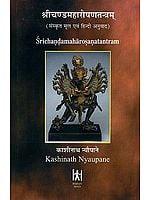 श्रीचण्डमहारोषणतन्त्रम् (संस्कृत एवं हिन्दी अनुवाद): Shri Chanda Maharosana Tantram