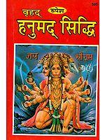 हनुमद् सिद्धि: How to Worship Hanuman Ji