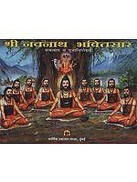 श्री नवनाथ भक्तिसार - Shri Navnath Bhaktisar (Marathi)
