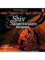 (1000 Names of Lord Shiva) Shiv Sahastranaam (Audio CD)