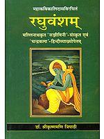 रघुवंशम्: Raghuvansham of Kalidasa  (संस्कृत एवम् हिन्दी अनुवाद)
