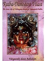 Sri-Sri Radha-Damodara Vilasa (The Inner life of Vishnujana Swami and Jayananda Prabhu): Volume One 1967-1972