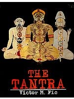 The Tantra (Its Origin, Theories, Art and Diffusion from India to Nepal, Tibet, Mongolia, China, Japan and Indonesia)