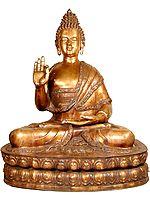 Large Size Buddha