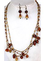 Brown Beaded Necklace and Earrings Set with Antiquated Chain