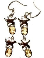 Fine Cut Citrine Starfish Earrings
