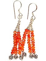 Israel Cut Carnelian Beaded Earrings