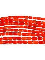 Plain Coral Fine Tubes