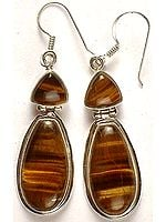 Tiger Eye Hinged Earrings