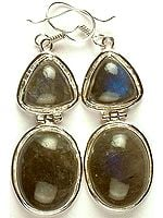 Twin Labradorite Hinged Earrings