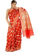 Bridal Red Jamdani Sari with All-Over Hand-Woven Flowers in Golden Thread