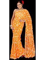 Orange Lukhnavi Chikan Sari with All-Over Embroidery