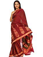 Fuchsia Hand-woven Banarasi Sari with Giant Leaves on Border
