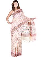 Beige Block-Printed Narayanpet Sari from Hyderabad with Painted Aanchal