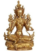 Tibetan Buddhist Deity- Green Tara (Sgrol ma ljang khu)