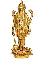 Lord Vishnu - Sustainer of Universe
