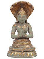Patanjali, Avatar Of Sheshnag