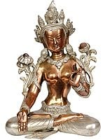 Tibetan Buddhist Goddess White Tara, Her Hands In Varada Mudra