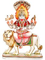 Atharvana Bhadrakali, The Presiding Deity of Atharvaveda (Goddess Pratyangira)