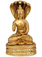 The Serpent Muchalinda Shelters Lord Buddha