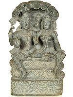 Shri Vishnu Lakshmi on Sheshnag