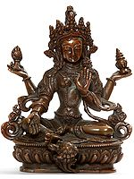 Nepalese Form of Goddess Lakshmi