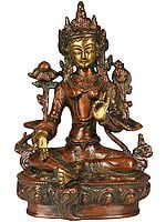(Tibetan Buddhist Deity) The Traditional Form of Green Tara