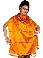 Amber Tehra Banarasi Stole Hand-Woven with All-Over Paisleys