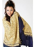 Navy-Blue Jamdani Stole with Dense Ari Embroidery from Kashmir
