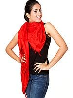 Red Banarasi Shawl with Tanchoi Weave
