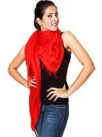 Red Banarasi Shawl with Tanchoi Weave
