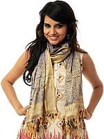 Handwoven Beige Banarasi Stole with Tanchoi Weave