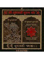 Shri Dhumavati Pujan Yantra