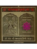 Shri Kamala Pujan Yantra