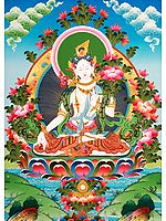 Superfine Tibetan Buddhist Goddess White Tara - The All-Embracing Compassionate Vision