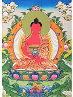 Tibetan Buddhist Amitabha Buddha - The Lord of Sukhavati