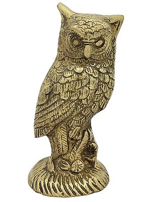 Lakshmi's Owl