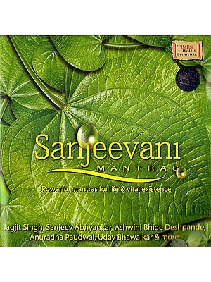 Sanjeevani Mantras: Powerful Mantras for Life & Vital Existence (Auido CD)