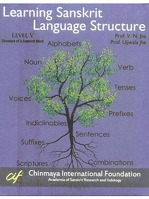 Learning Sanskrit Language Structure  - Structure of a Sanskrit Word Level V (Set of 21 DVDs)